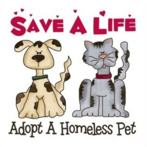 Other - ADOPT, don't shop!